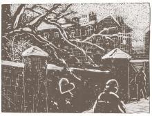 Matěj Lipavský ilustrace tweety 1956-1963
